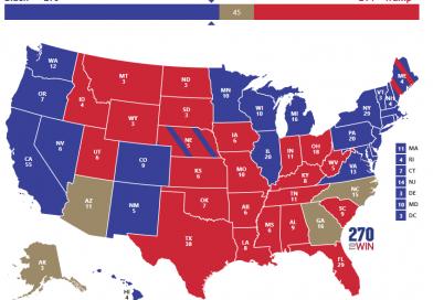 Der Gewinner der US-Präsidentschaftswahl
